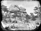Camel Rock near Beauford Station U.P.R.R.