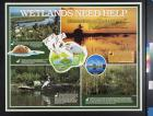 Wetlands Need Help