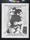 Three Animals Die Every Second In U.S. Laboratories