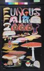 Fungus Fair 2000