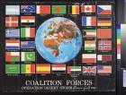 Coalition forces