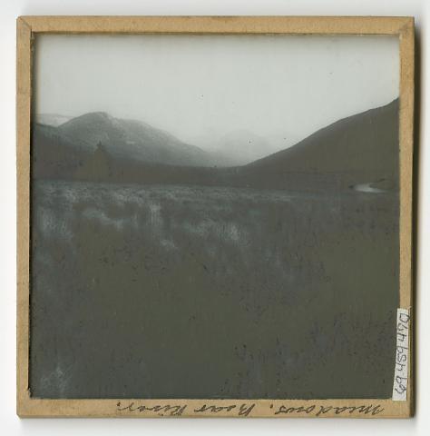 Meadows, Bear River