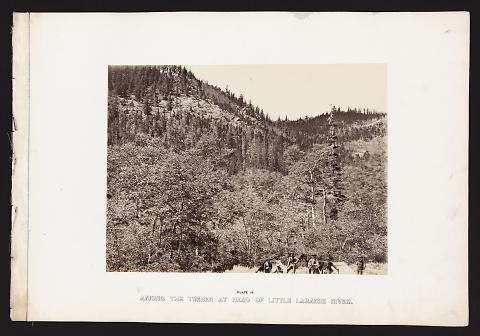 Among The Timber At Head Of Little Laramie River from The Great West Illustrated in a Series of Photographic Views Across the Continent