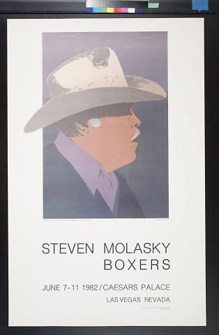 Steven Molasky: Boxers
