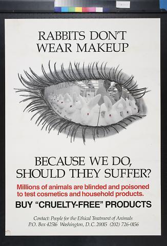 Rabbits Don't Wear Makeup