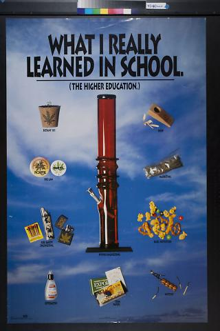 What I Really Learned In School
