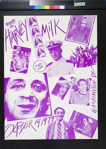 Tribute to Harvey Milk