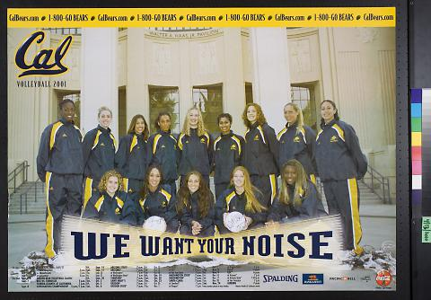 Cal Volleyball 2001 team photograph