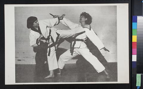 Untitled (Two people in a martial arts fight)