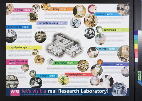 let's visit a real research laboratory