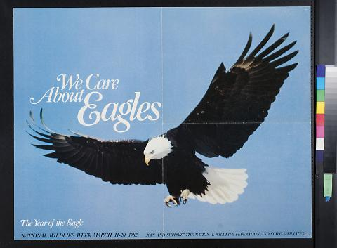 We Care About Eagles