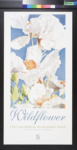 Wildflower: 1997 California Wildflower Show