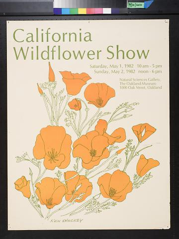 California Wildflower Show