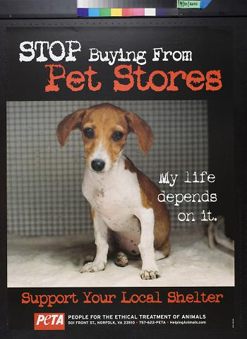 Stop buying from pet stores