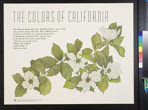 The Colors Of California