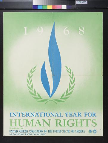 International Year for Human Rights