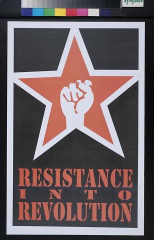Resistance into Revolution